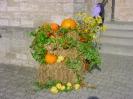 Erntedankfest 2009 12