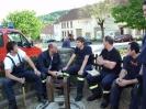 Maifest_2011 3