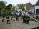 Hexenfest 2009 16